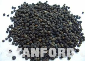 Natural Source of Black Pepper
