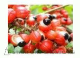 Natural Source of Guarana Seed