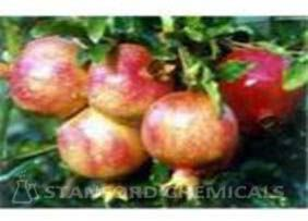 Natural Source of Pomegranate Husk